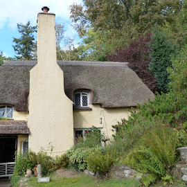 Thatch roof cottage by Teresa Chadwick - Buildings & Architecture Homes