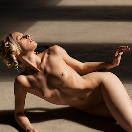 Sun light by Colin Dixon - Nudes & Boudoir Artistic Nude ( nude, shadow, beauty, glow, light, women, sun )