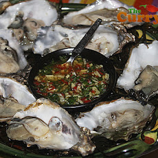 Fresh Oysters With A Spicy Sauce