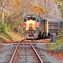 Leaf Peeping on the Cuyahoga Valley Scenic Railroad by Reuss Griffiths - Transportation Trains ( diesel, cuyahoga valley np, railroad, cuyahoga valley scenic railroad )