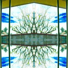 Mirror Image by Bong Perez - Digital Art Abstract