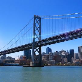 San Francisco  by Tricia Scott - City,  Street & Park  Skylines ( skyline, bay, bay bridge, bridge, boat, cruise, san francisco )