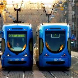 Zagreb City Tram by Tomislav Zebic - Transportation Other
