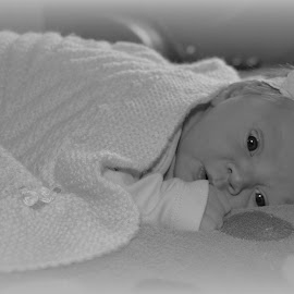 Porschia-Abi by Kristin Walsh - Babies & Children Babies (  )