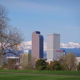 Skyline of Denver by Sean M. Chase - City,  Street & Park  Skylines ( skyline, rocky mountains, denver, colorado, city park )
