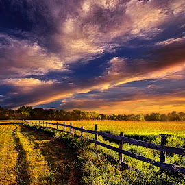 A Fence Runs Through It by Phil Koch - Landscapes Prairies, Meadows & Fields ( vertical, photograph, farmland, yellow, leaves, photooftheday, love, sky, tree, nature, autumn, bestoftheday, border, flower, instagood, follow, orange, twilight, agriculture, horizon, portrait, fence, environment, dawn, serene, trees, floral, natural light, wisconsin, landscape, phil koch, spring, photography, sun, farm, rail, horizons, inspired, clouds, office, park, green, scenic, morning, shadows, wild flowers, field, picoftheday, red, blue, sunset, peace, fall, meadow, landscapephotography, summer, earth, sunrise, landscapes )