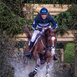 OK whats next by Sue Niven - Sports & Fitness Other Sports ( waterjump, eventing, horse, cross country, blenheim castle )