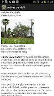 Arbres de Mali - screenshot
