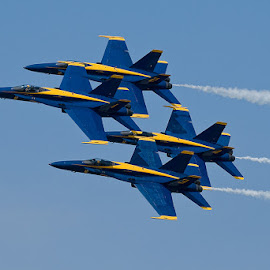 by Walter Farnham - Transportation Airplanes ( 2008, color, f18, cherry point, blue angels,  )