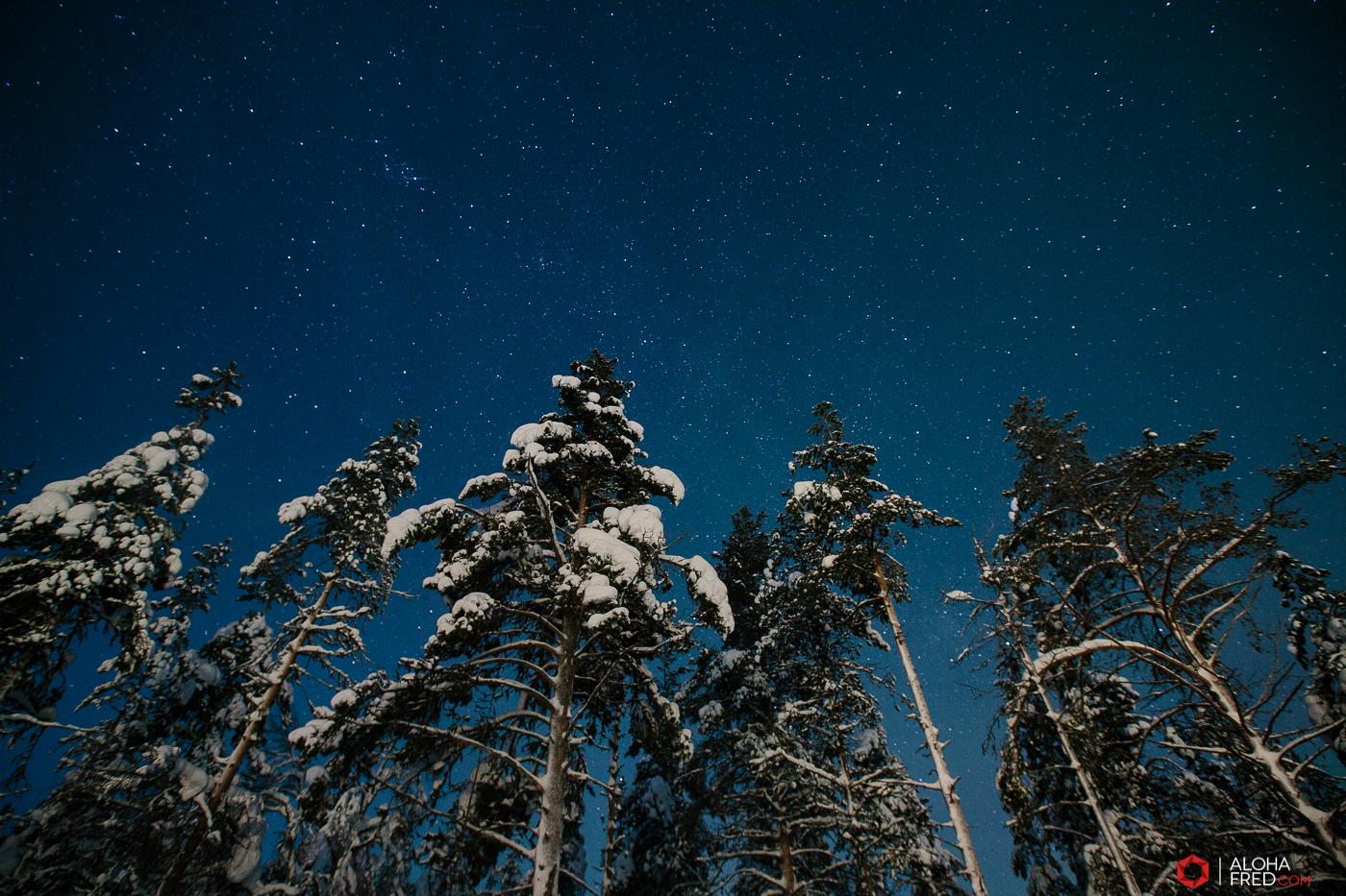0036 - alohafred Laponie - _5E_1061