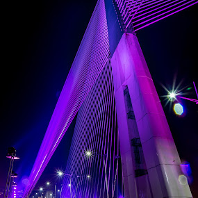 by Andy Teoh - Buildings & Architecture Bridges & Suspended Structures ( putrajaya, atp, bridges, wawasan, andyteoh photography, creativity, lighting, art, artistic, purple, mood factory, lights, color, fun )