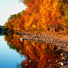 Mighty Mississippi River by Jennifer Schmidt - Landscapes Travel ( fall leaves, fall colors, mississippi river, autumn colors mn, minnesota fall colors,  )