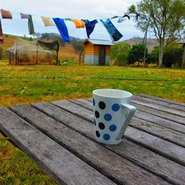 The Cup by Vijay Balasundaram - Landscapes Prairies, Meadows & Fields