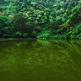 Telaga Warna by Ad Har - Nature Up Close Other Natural Objects