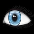Eye Quiz Application icon
