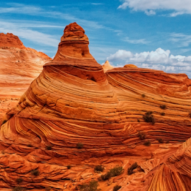 Lighthouse at The Wave by Becky Adolf - Landscapes Deserts ( desert, the wave, utah, colors, layers, arizona, sandstone,  )
