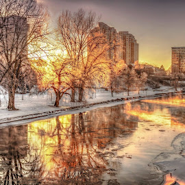 28/365-2015 Harris Park /This morning with by Jiabi Yang - Landscapes Sunsets & Sunrises (  )