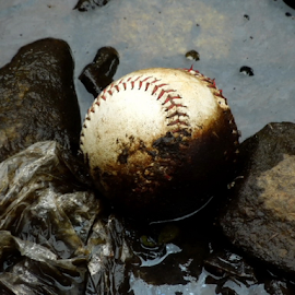 So much for baseball! by Benito Flores Jr - Sports & Fitness Baseball (  )