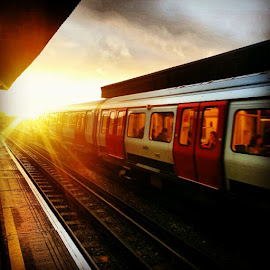 London's calling by Ravi Shukle - Transportation Trains