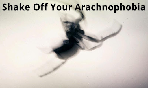 Shake Off Your Arachnophobia