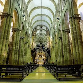 Cathedral of Santiago de Compostela by Sandra Filipe - Buildings & Architecture Architectural Detail ( galicia, church, cathedral, santiago de compostela, spain )