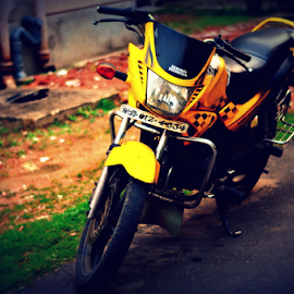 Motorcycle by Anindya Karmakar - Transportation Motorcycles ( green, motorcycle, yellow, road, black,  )