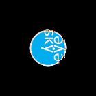 SkyEye icon