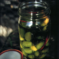 Green Olives Marinated with Wild Fennel