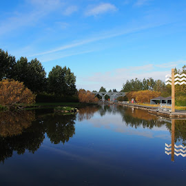 Reykjavík park by Ólafur Ingi Ólafsson - City,  Street & Park  City Parks ( sign, water, clouds, signs, reflection, sky, tree, heaven, reflections, weather, trees, cloud )