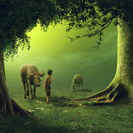 come with me by Hendra YM - Digital Art People ( tree, kerbau, fine art, morning, people, kid )