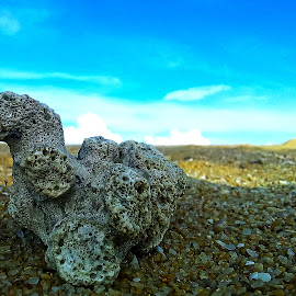 Things on beach by Brothers Photography - Nature Up Close Rock & Stone ( things on beach,  )