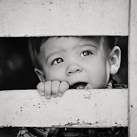 Curious C by Ali Reagan - Babies & Children Children Candids ( child, blackandwhite, awe, amazed, play, thoughtful, boy, eyes )