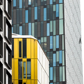 Tricolore: Wien, Finanzamt by Stefan Tiesing - Buildings & Architecture Architectural Detail