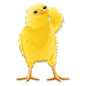 Talking Chicken icon