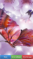 Screenshot of Butterflies HD Wallpapers