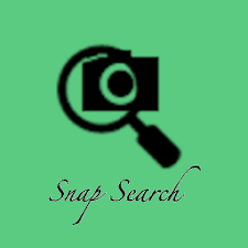 Snap Search - Modern Gallery