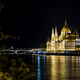 Budapest1 by Josip Ćutunić - Buildings & Architecture Statues & Monuments ( hungary, building, budapest, night, bridge, palace, danube, river )