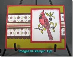 CardinalChristmas_Sue-LynnB