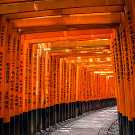 Fushimi Inari Shrine by Dede Sutarno - Buildings & Architecture Other Exteriors ( fushimi inari shrine )