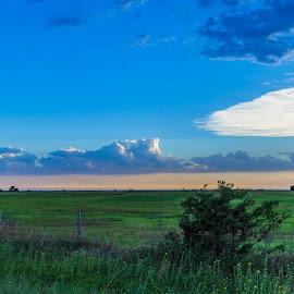 by Richard Turner - Landscapes Weather
