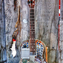 Slim Bawp Pierce's  Resonator by Scott Walker - Artistic Objects Musical Instruments ( color, musician, resonator, guitar, blues )