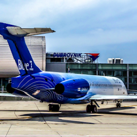 Parking position by Darko Maretić - Transportation Airplanes ( airport, plane, engine, blue, turbofan, civil, jet, private,  )