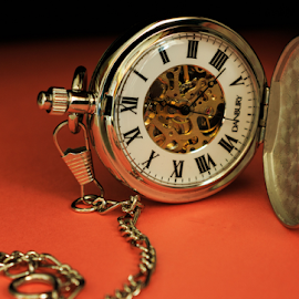 Pocket Watch by Rick Touhey - Artistic Objects Jewelry ( pocket watch, danbury, watch, clothing accessories, jewelry, watch gears )