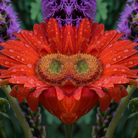 Red Lady Flower by Michael Moriarty - Digital Art Things ( plant, colorful, vibrant, women, mirror, red, nature, female, woman, digital art, lady, flower, floral )
