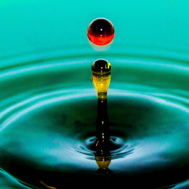 green, yellow, Red Drop! by Anthony Stark - Novices Only Macro ( water, anthony stark, macro, novice, red drop!, photography,  )