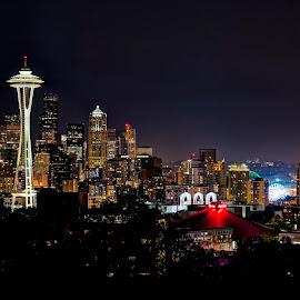 Seattle Nighscape by John Williams - City,  Street & Park  Skylines ( washington, space needle, seattle, cityscape, nightscape )