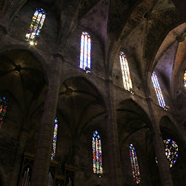 Palma Cathedral. by Stephen Jones - Buildings & Architecture Places of Worship