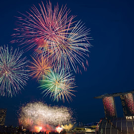Singapore's National Day Celebrations by Gavin Lee - News & Events World Events ( skyline, ndp, celebrations, fireworks, singapore )