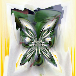 WLF Abstract 2 by Tina Dare - Digital Art Abstract ( abstract, patterns, designs, distorted, shapes )