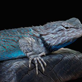 Benched by Michael Moriarty - Animals Reptiles ( lizard, desert, blue, digital art, reptile, animal )